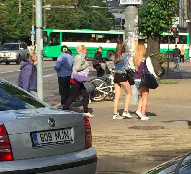 Gatas estonianas nas ruas de Tallinn